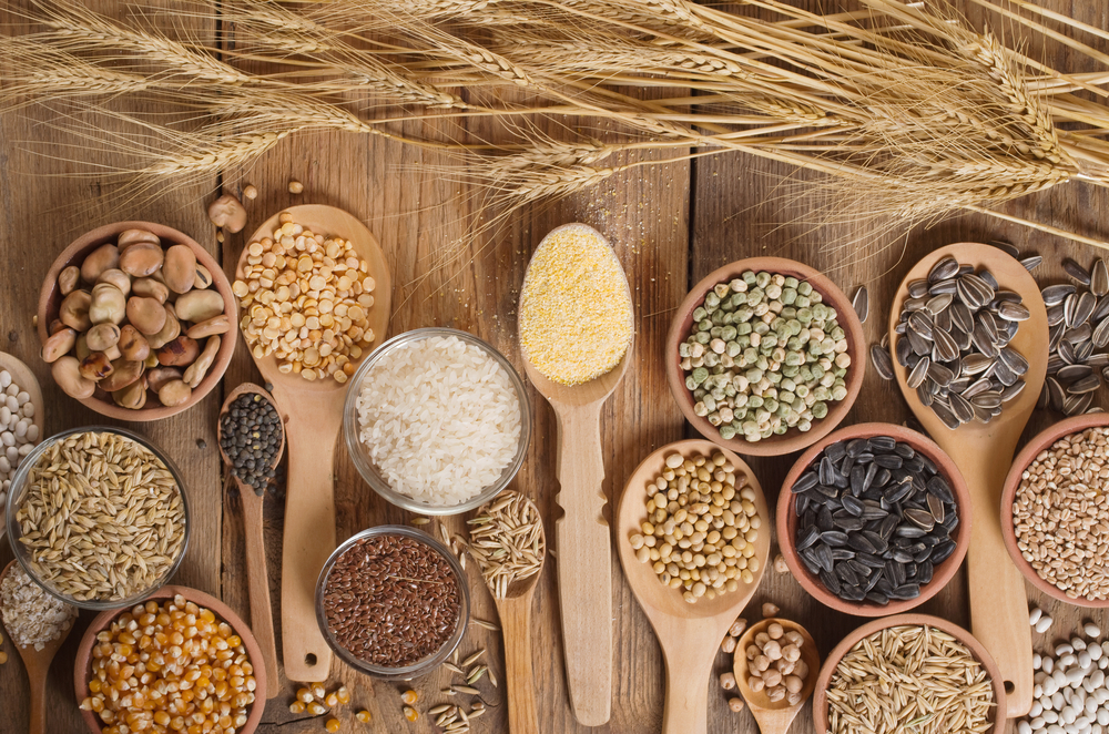 guide to grains
